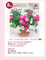 monthly_04_img05.jpg